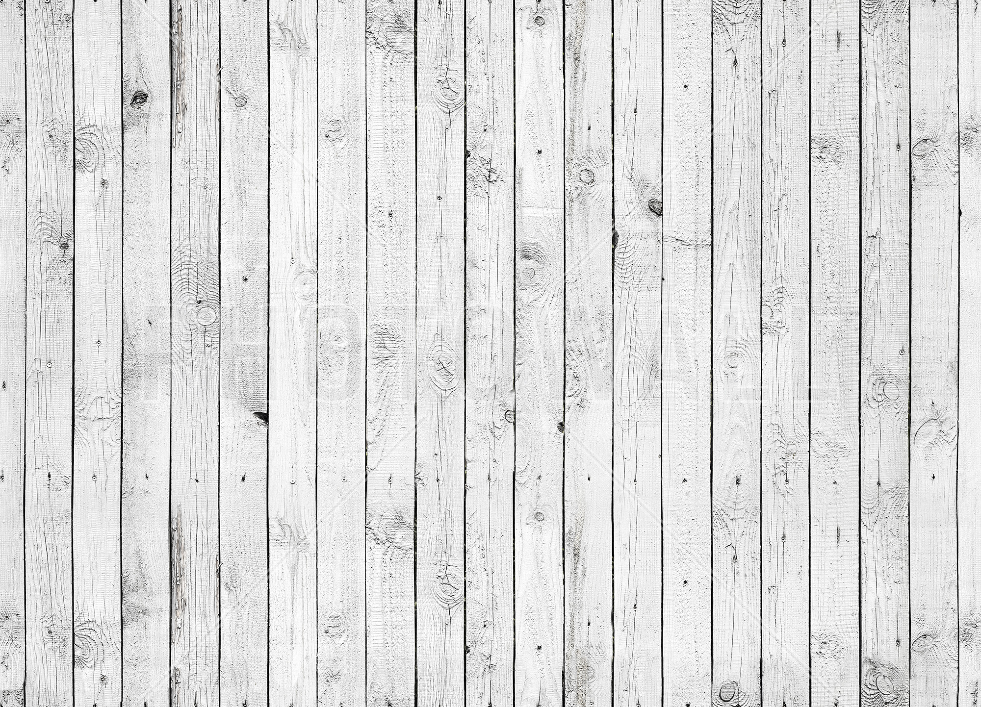 Charmant Wall Murals; White Painted Wood. Previous