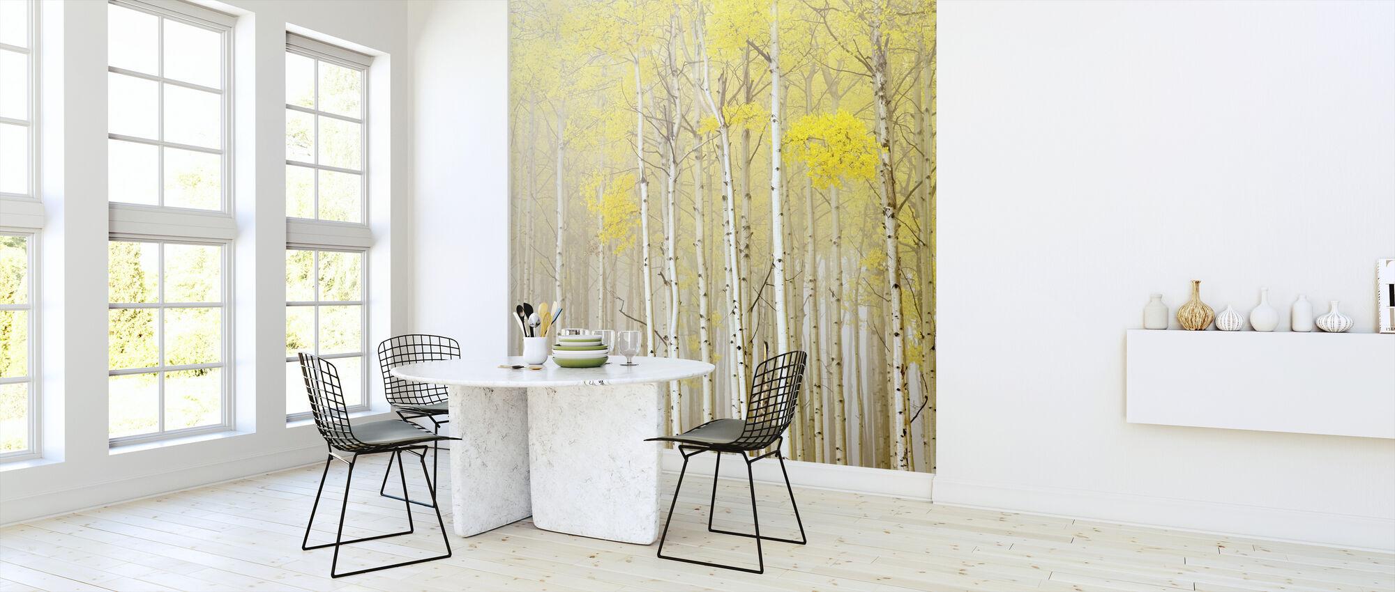 Aspens in Fog - Wallpaper - Kitchen