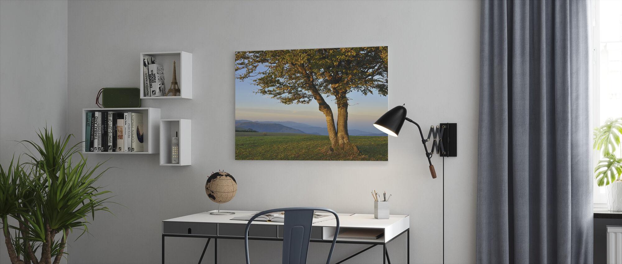Beukenboom in het Zwarte Woud - Canvas print - Kantoor