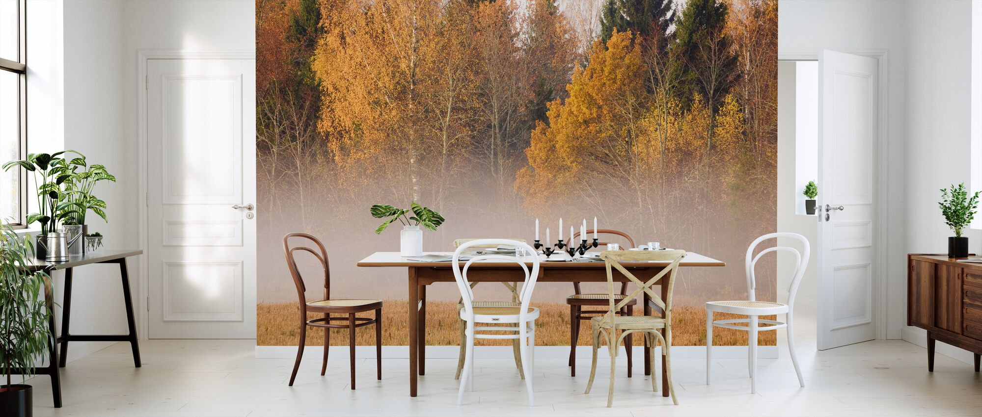 Fog and Fall Colors - Wallpaper - Kitchen