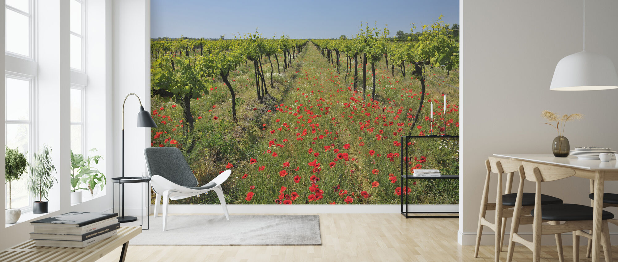 Poppies in the Vineyard - Wallpaper - Living Room