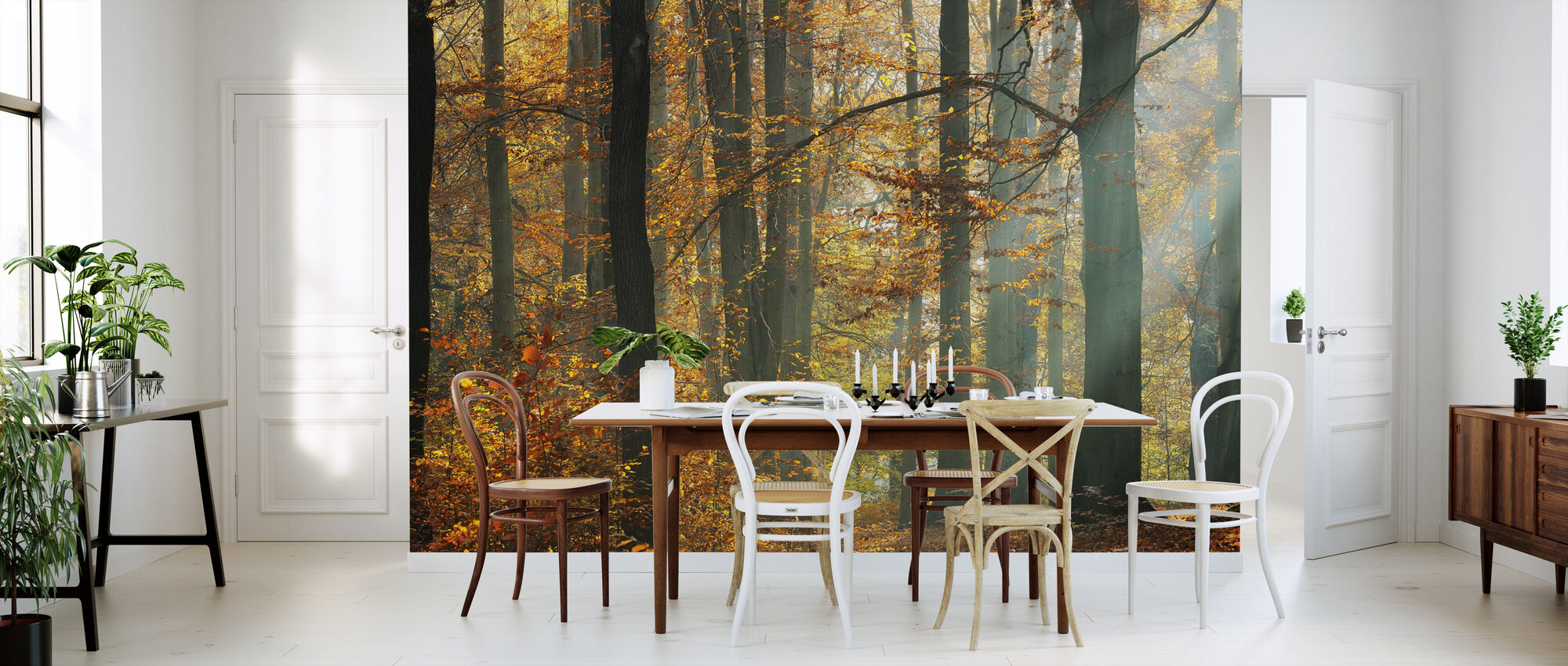 Sunbeams in a Colorful Autumnal Forest - Wallpaper - Kitchen