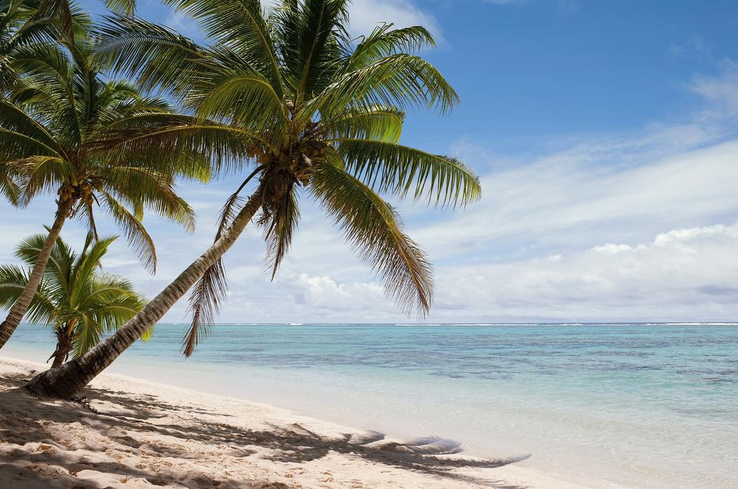 Tropical Beach Scene Fotobehang Online Photowall