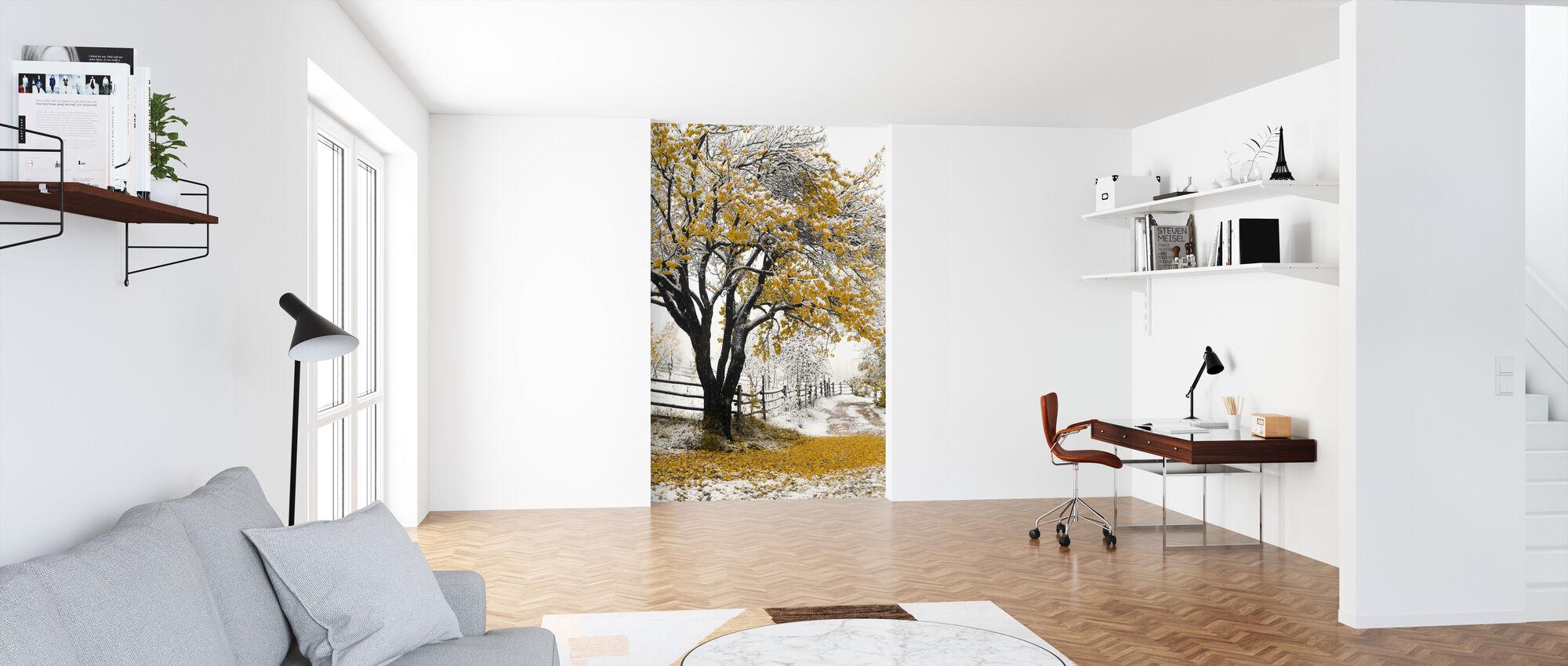 Abrikos Træ - Tapet - Kontor