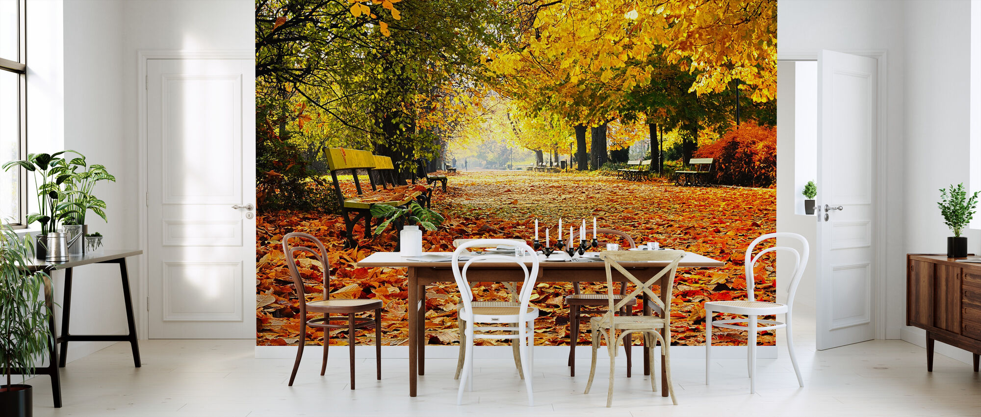 Autumn Park - Wallpaper - Kitchen