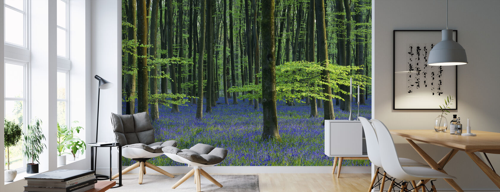 Beautiful Bluebells - Wallpaper - Living Room