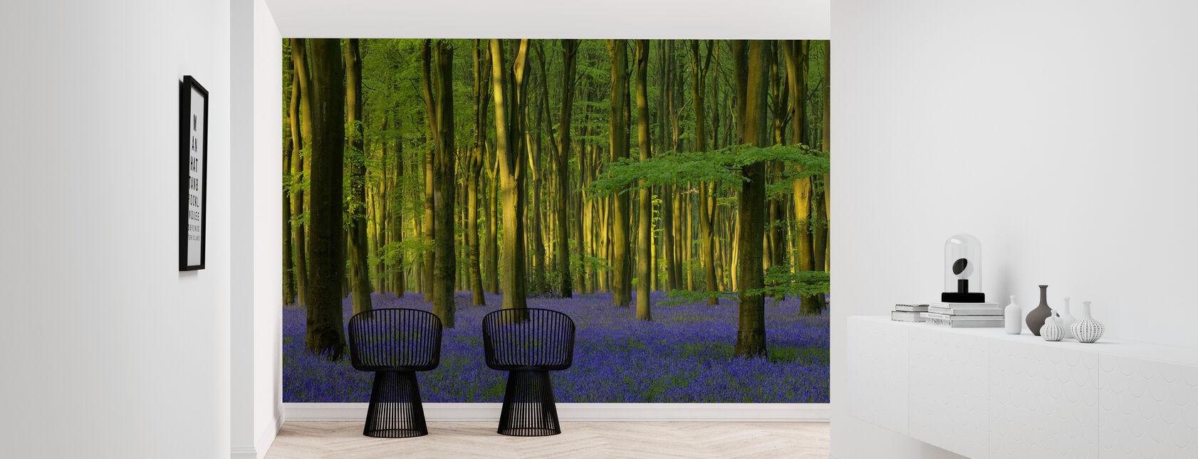 Bluebells in Sunlight - Wallpaper - Hallway