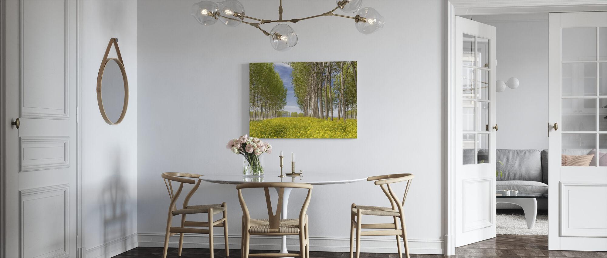 Poppeltrær i Golden Field - Lerretsbilde - Kjøkken