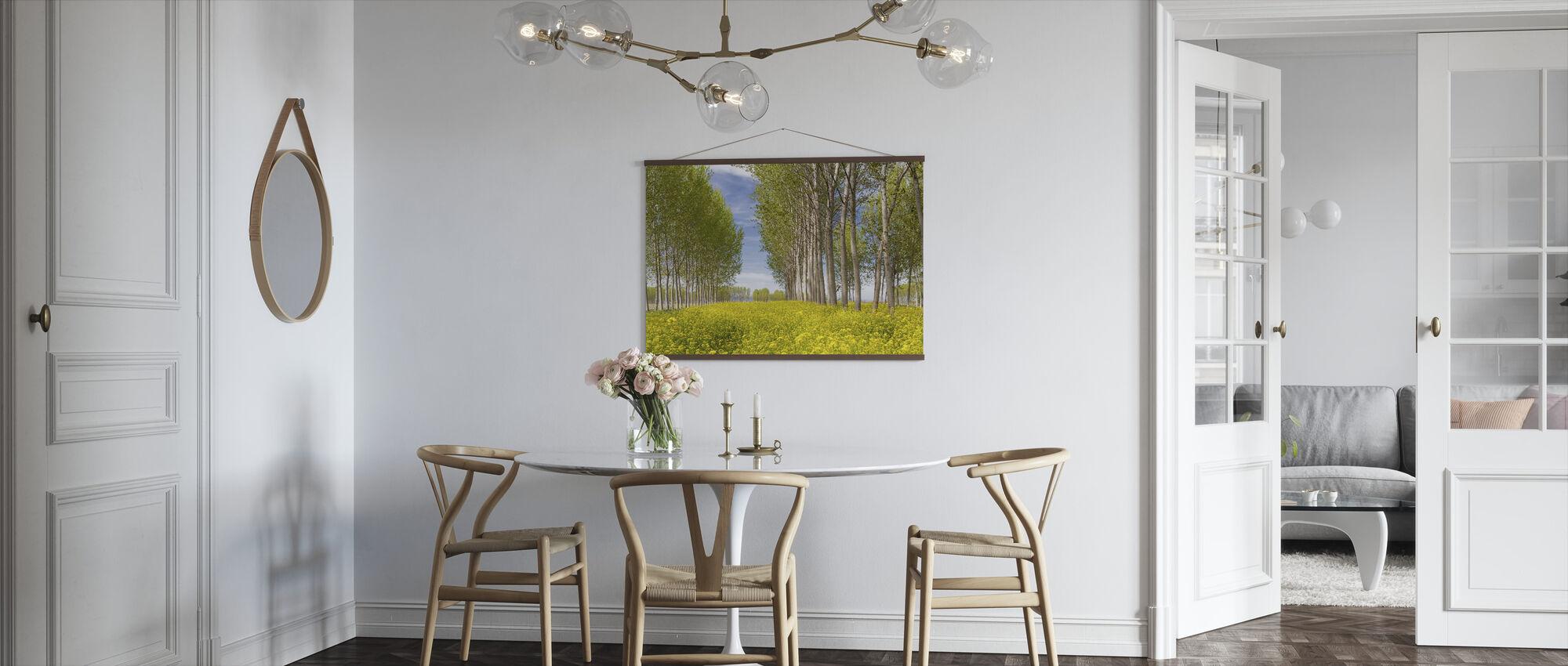 Poplars puita Kultaisen kentän - Juliste - Keittiö