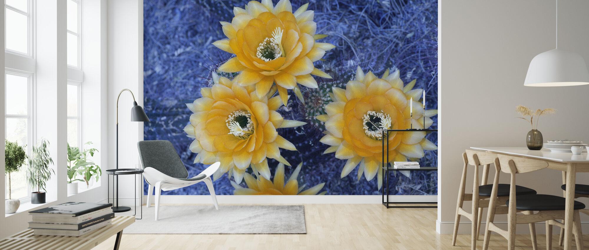 Bloeiende Trichocereus Cactus - Behang - Woonkamer