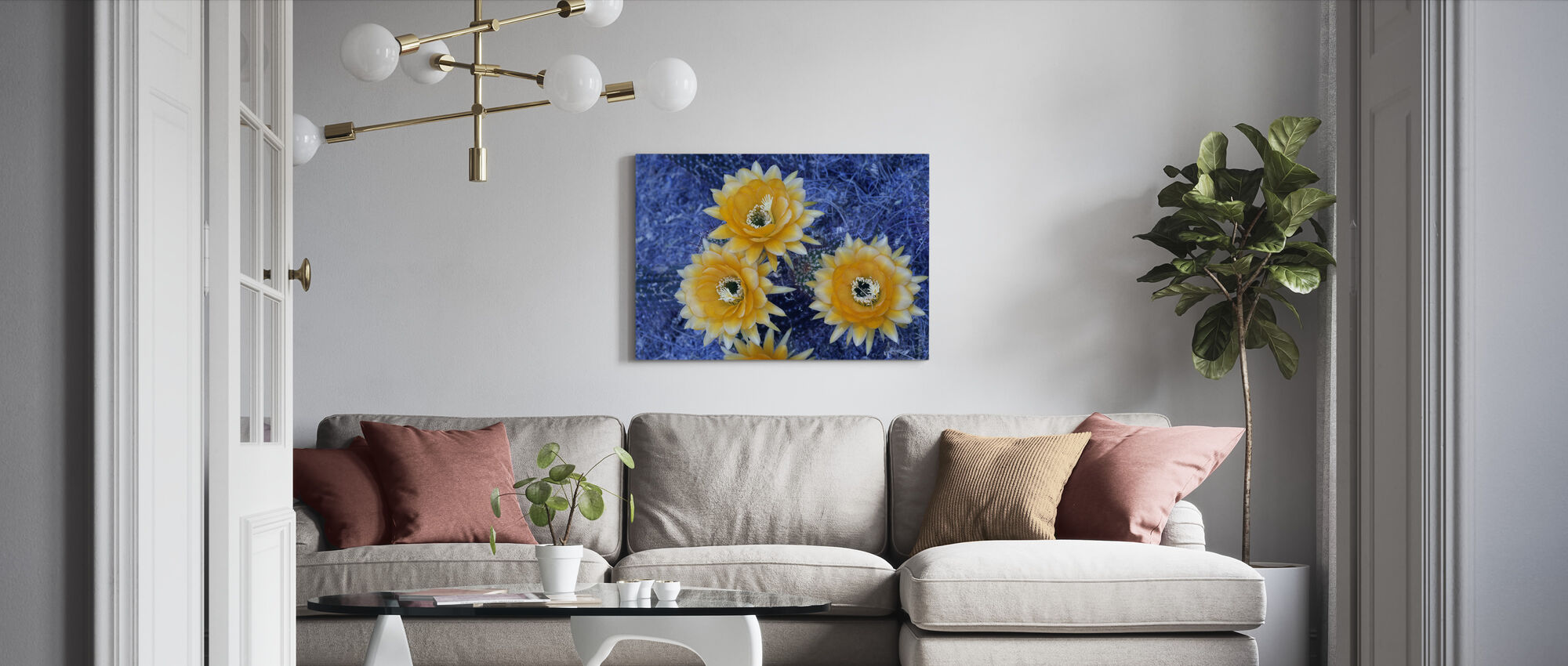 Blooming Trichocereus Cactus - Canvas print - Living Room