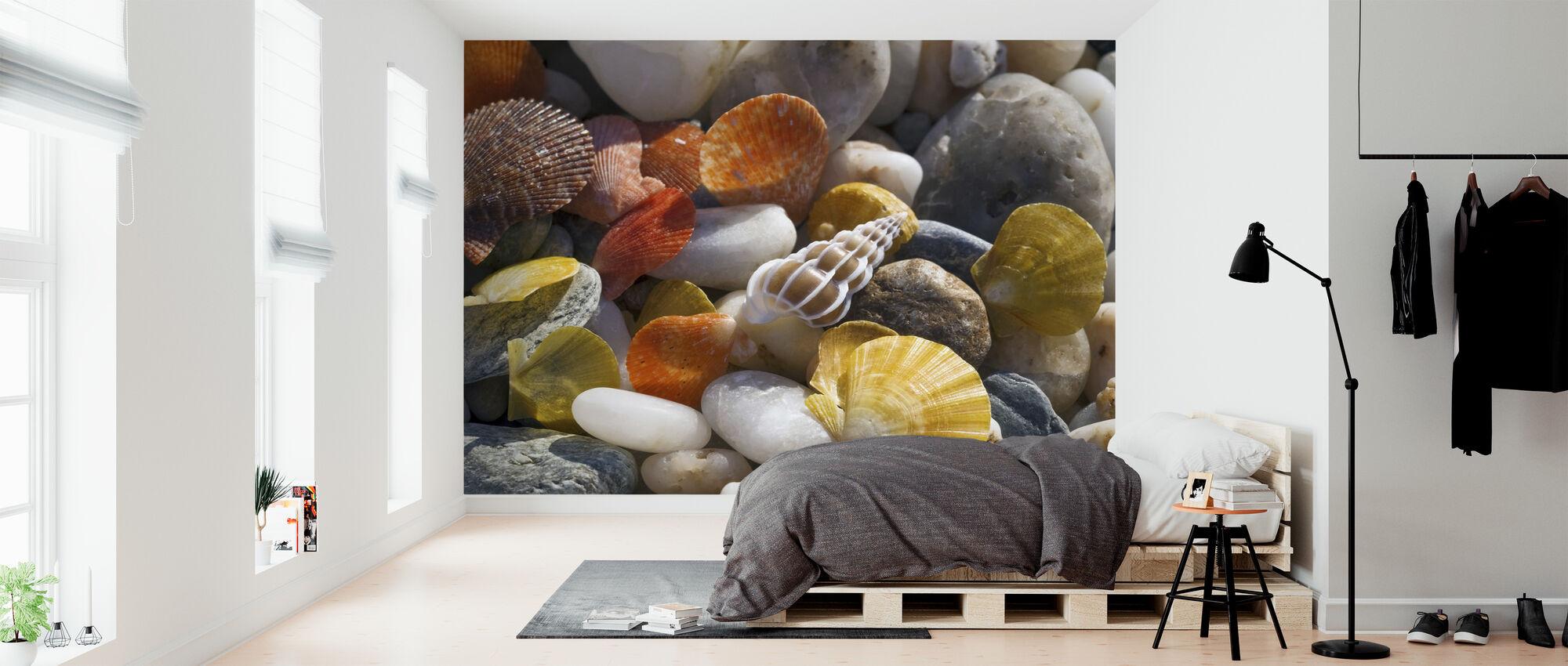 Colorful Seashells and Pebbles - Wallpaper - Bedroom