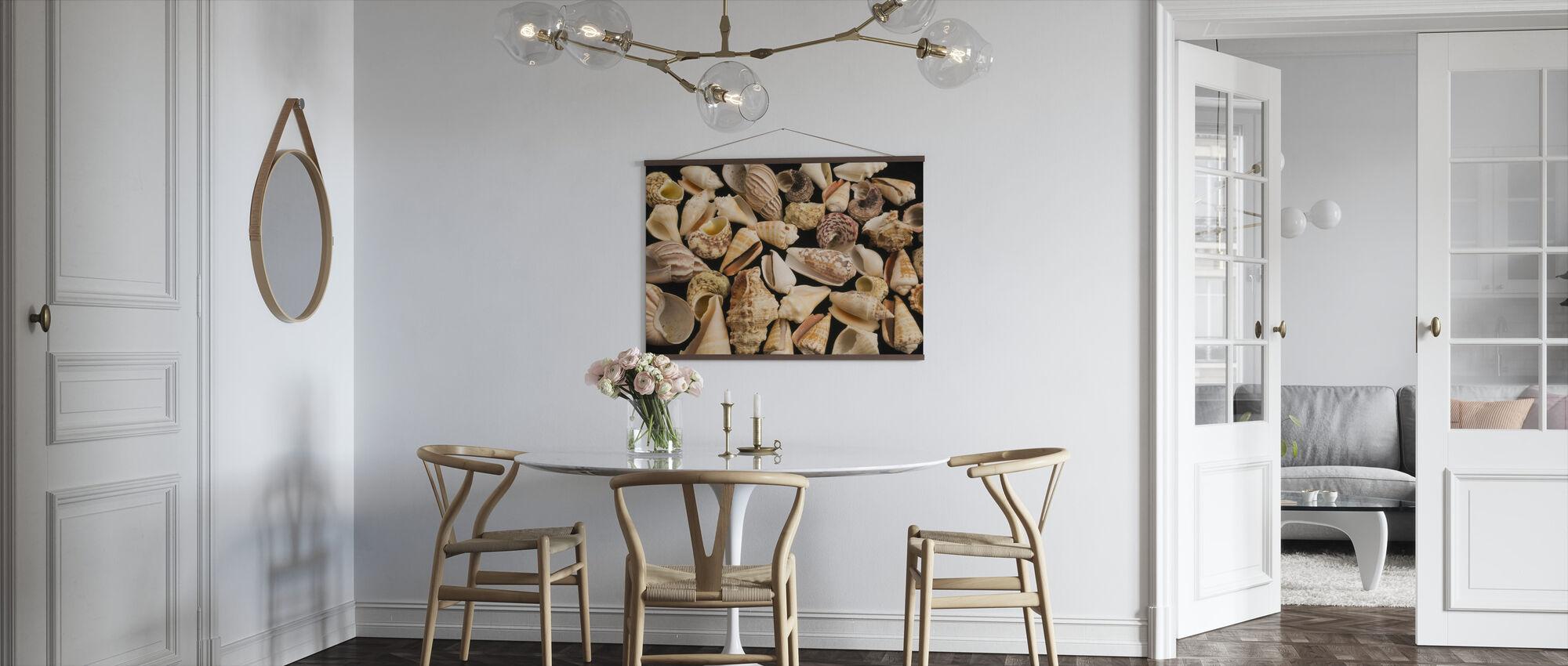 Con Shells - Poster - Kitchen