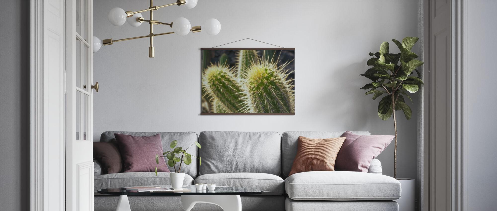 Kultainen tynnyri Kaktus - Juliste - Olohuone