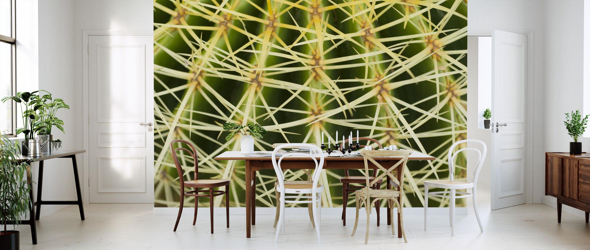 Golden Barrel Cactus Close Up - Wallpaper - Kitchen