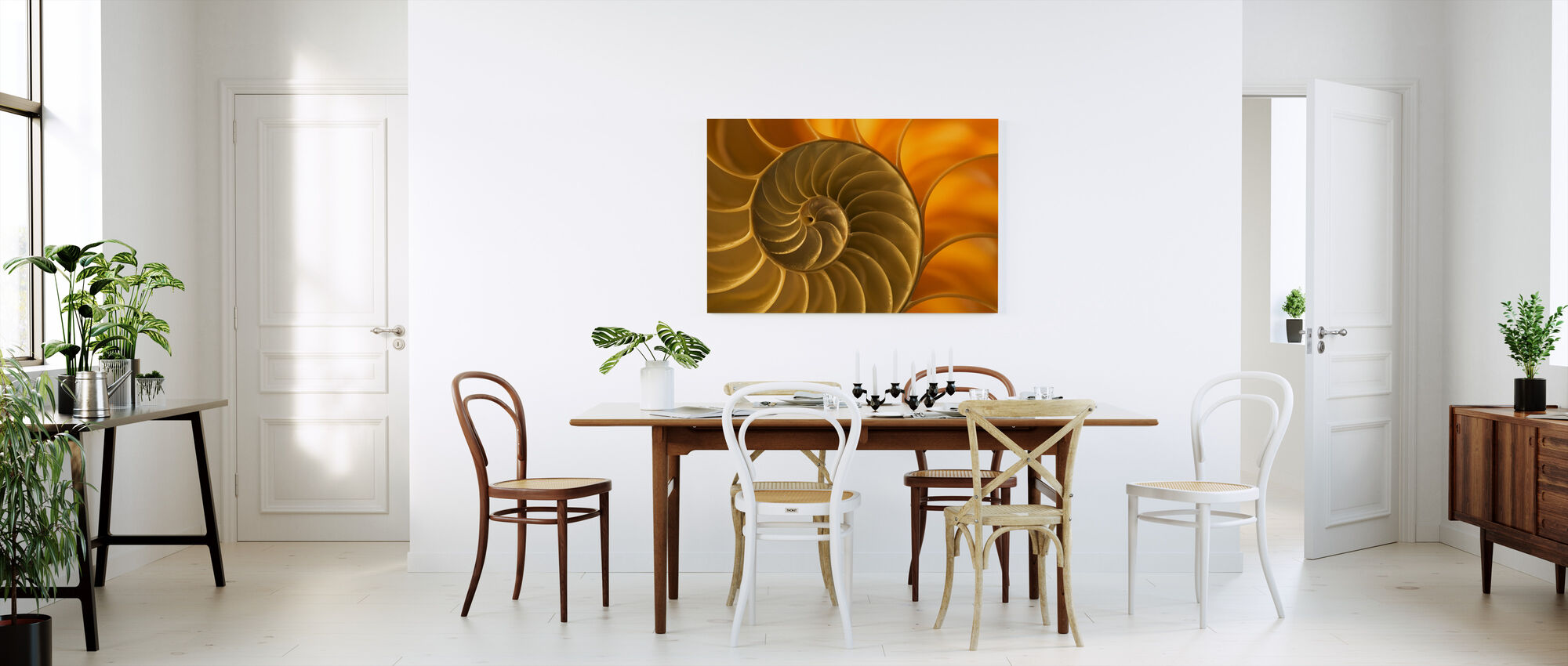 Nautilus Shell - Canvas print - Kitchen
