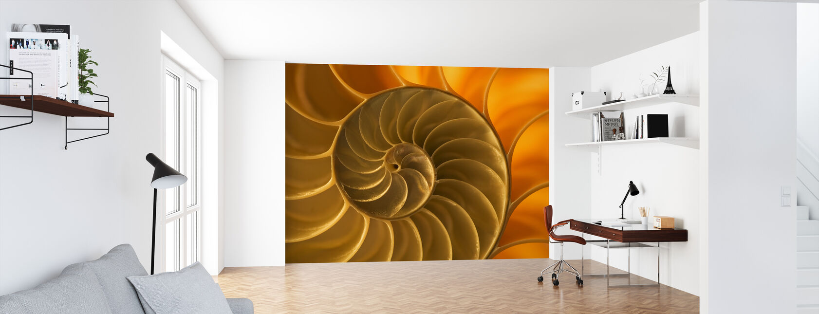 Nautilus Shell - Wallpaper - Office