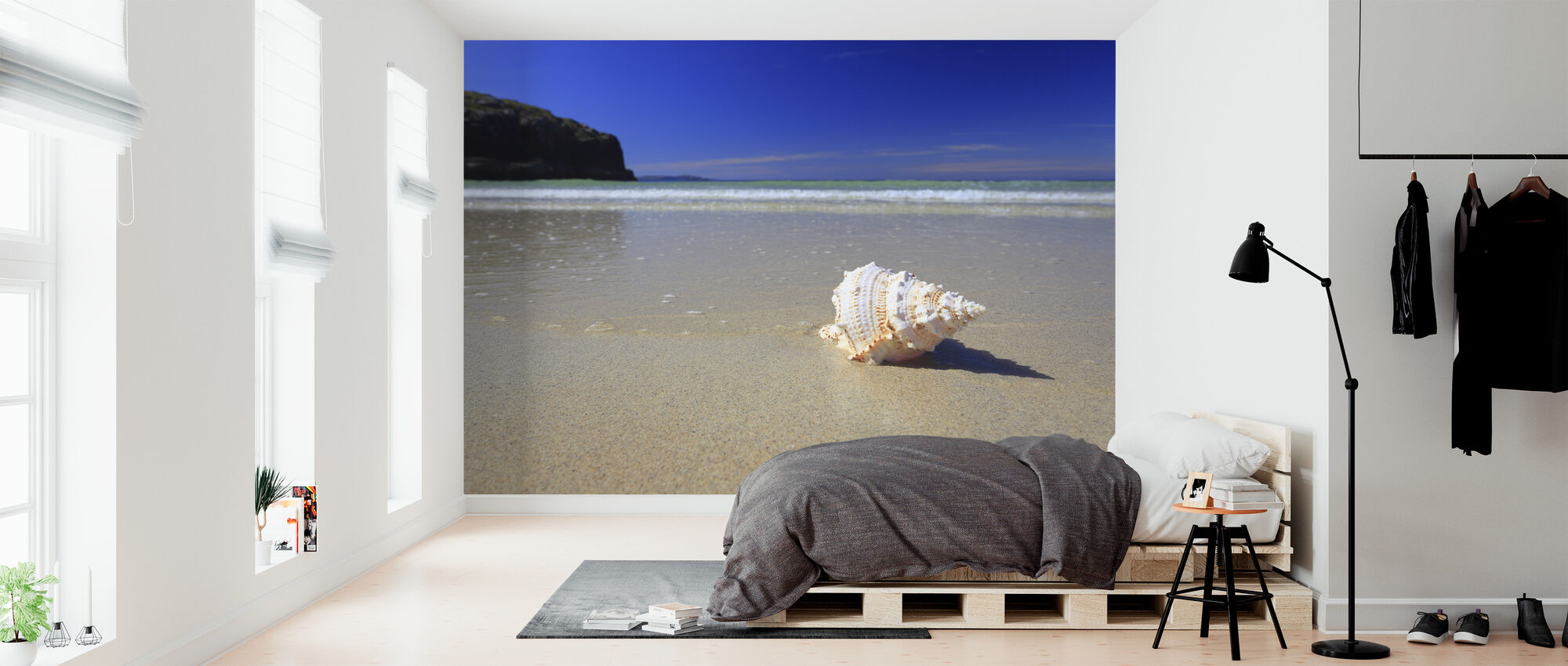 Shell on Beach - Wallpaper - Bedroom