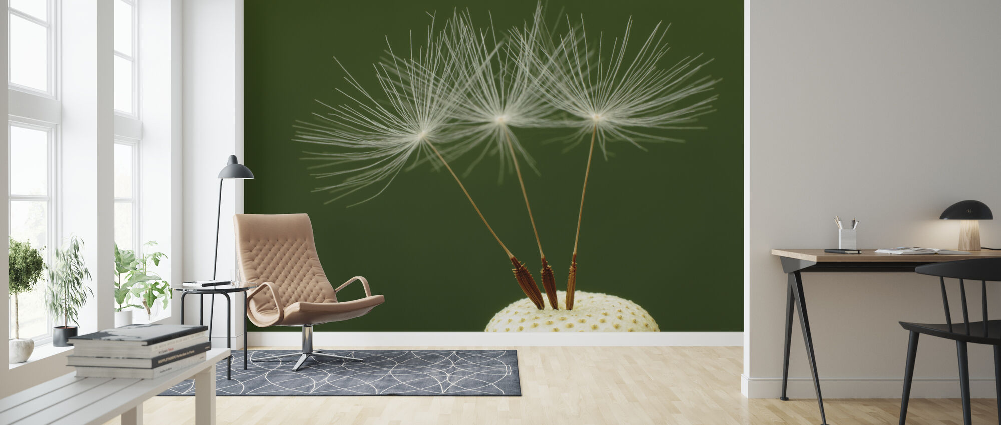 Three Dandelion Seeds - Wallpaper - Living Room
