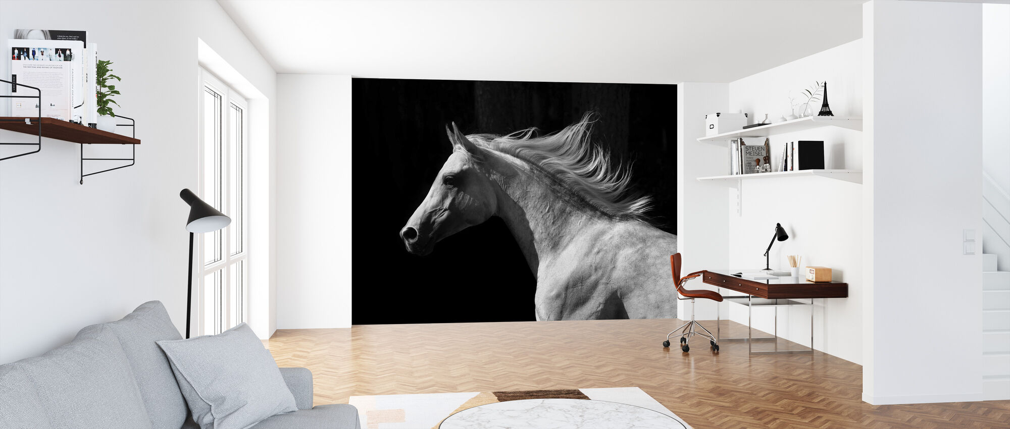 Gray Arab Stallion - Wallpaper - Office