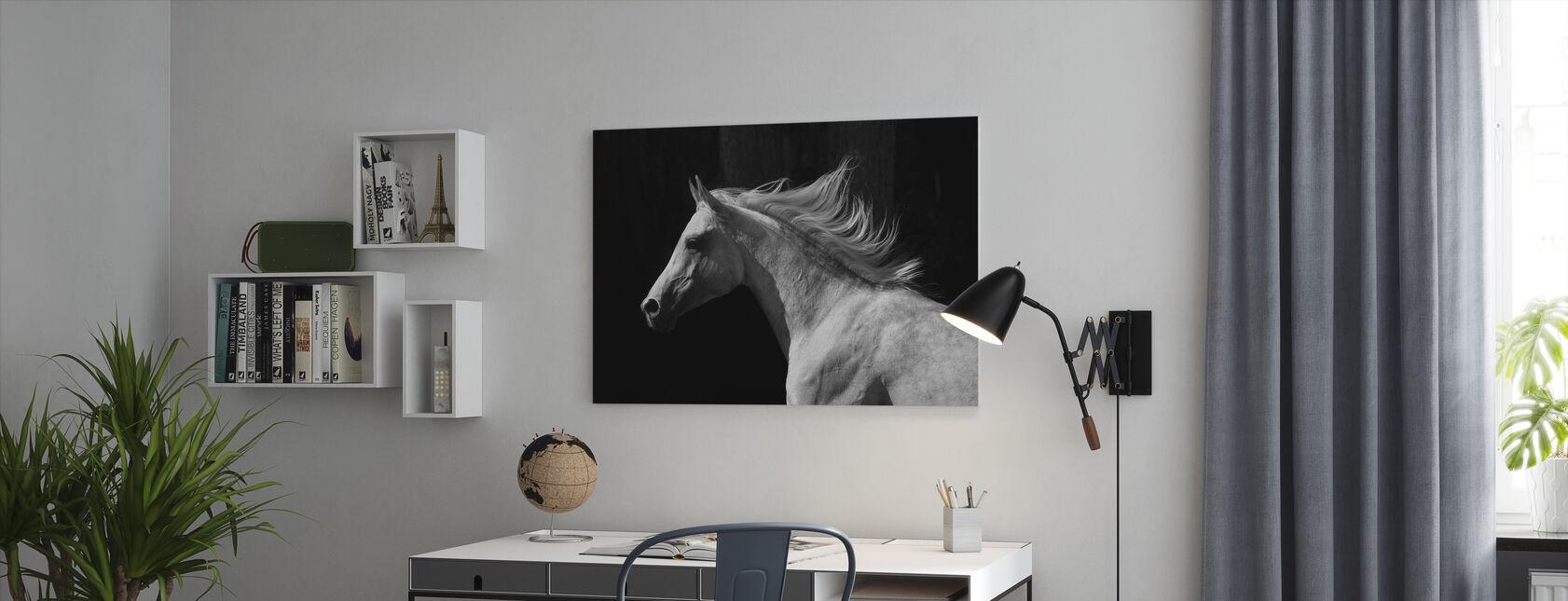 Gray Arab Stallion - Canvas print - Office