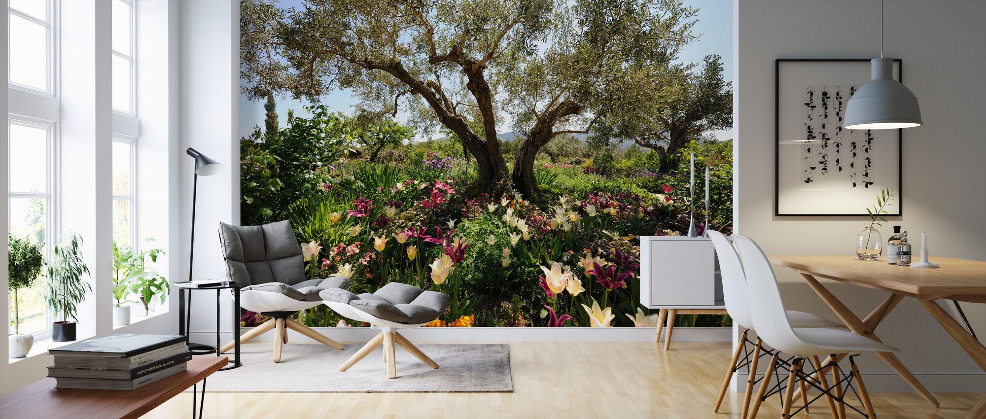 Beneath the Olive Tree - Wallpaper - Living Room