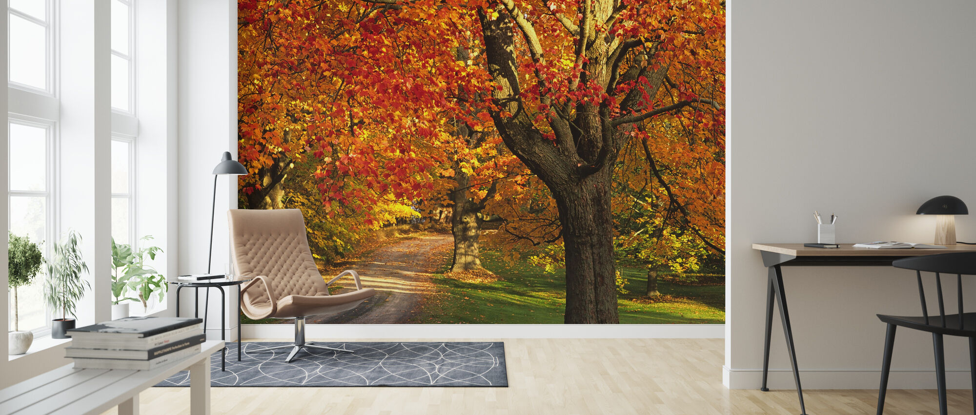 Golden Maple Tree - Wallpaper - Living Room