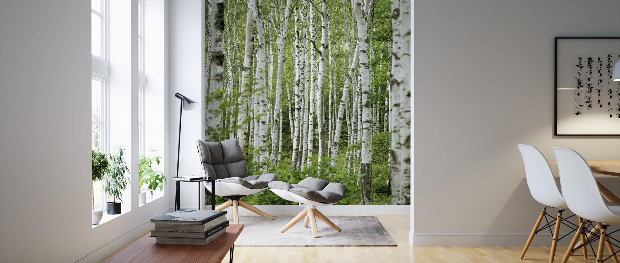 Summer Birch Trees - Wallpaper - Living Room