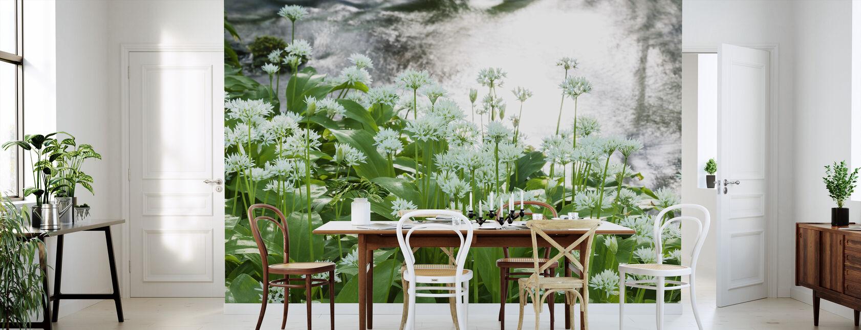 Ramson - Wallpaper - Kitchen