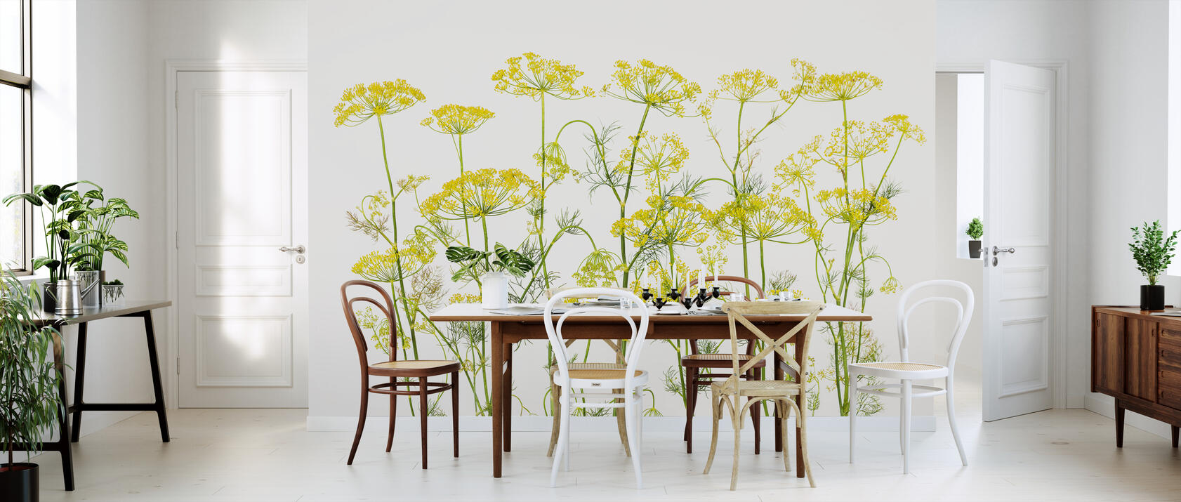 dill herb preiswerte fototapete photowall. Black Bedroom Furniture Sets. Home Design Ideas