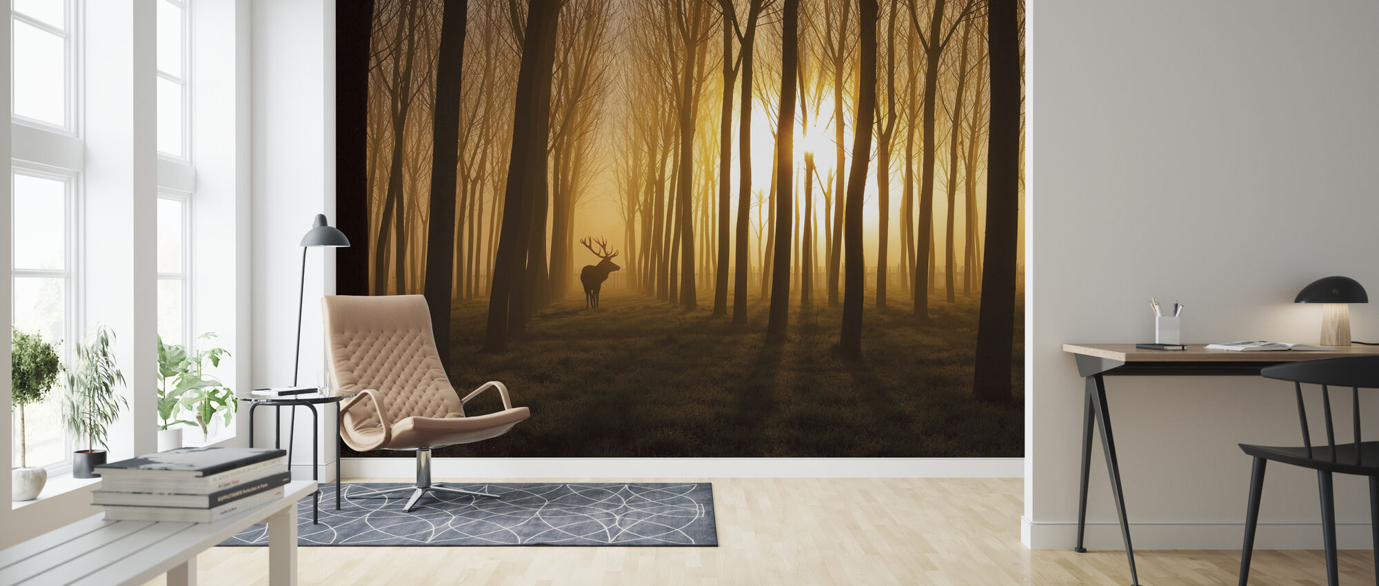 Once Upon a Time - Wallpaper - Living Room