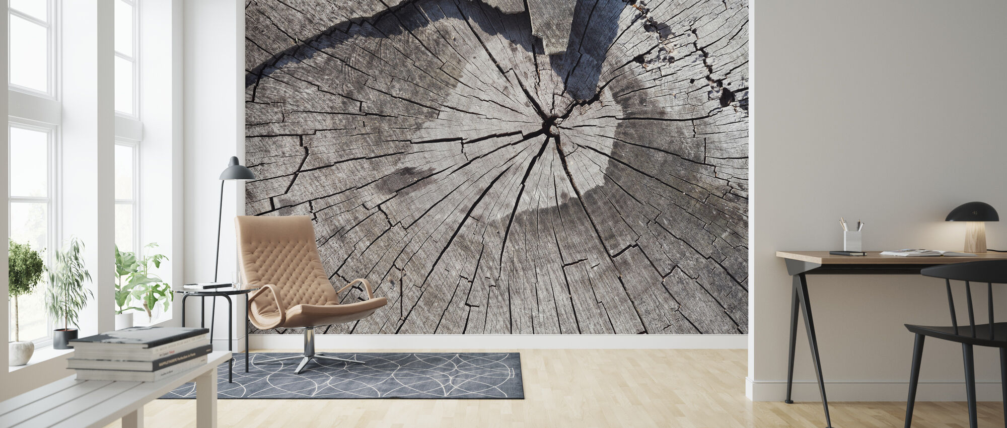 Old Tree Trunk - Wallpaper - Living Room