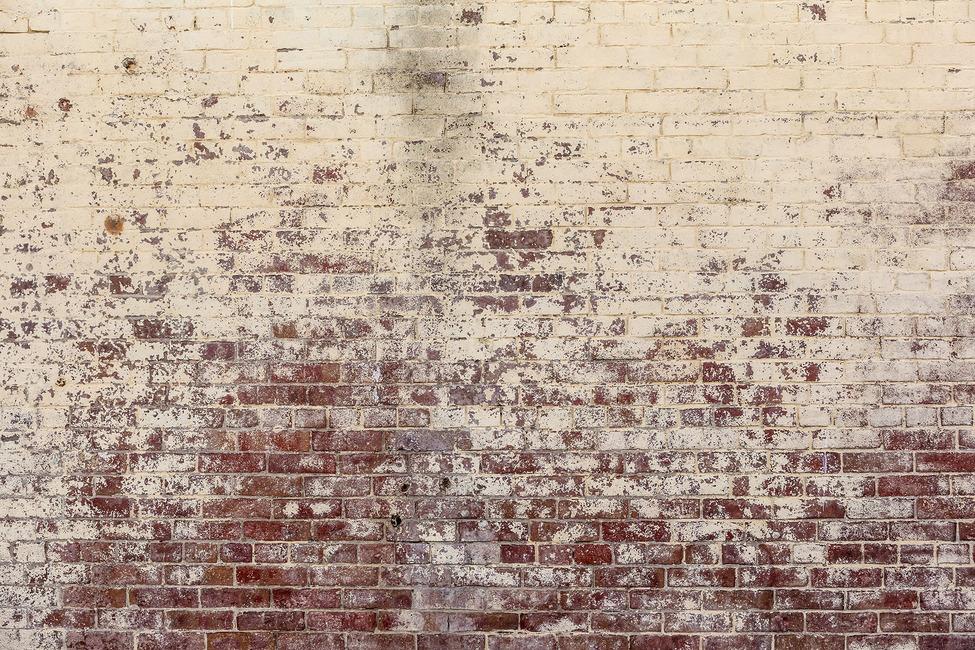 Long Since White Brick Wall Fototapeter & Tapeter 100 x 100 cm