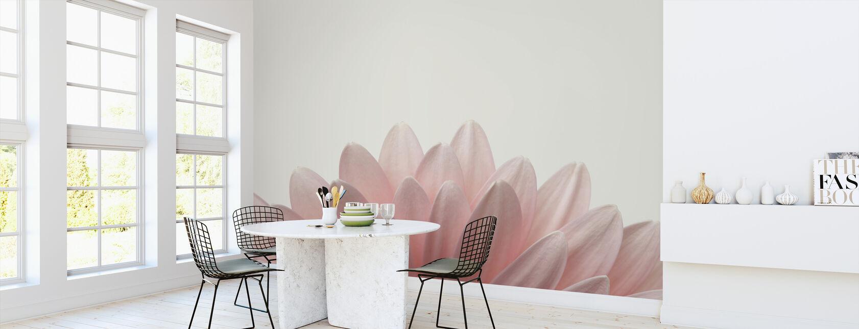Blek rosa Gerbera - Tapet - Kjøkken