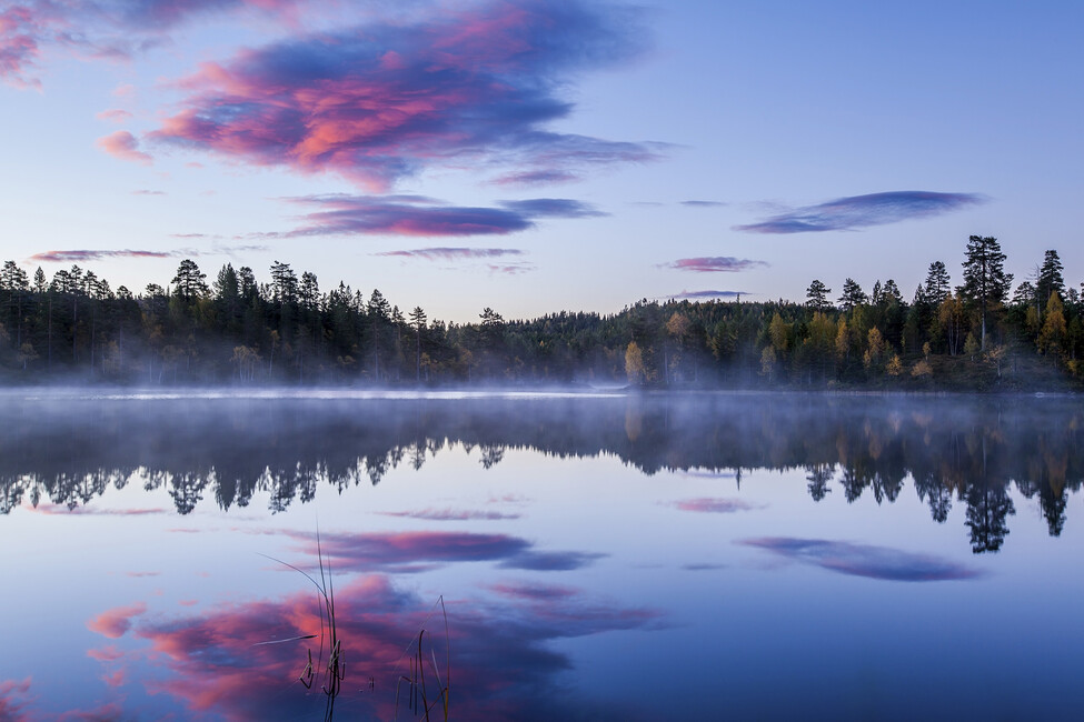 Norwegian Morning Wall Mural Amp Photo Wallpaper Photowall