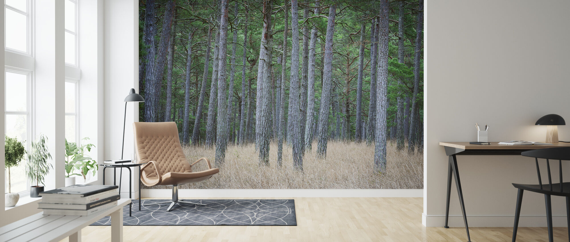 Mystery Pine Forest - Wallpaper - Living Room