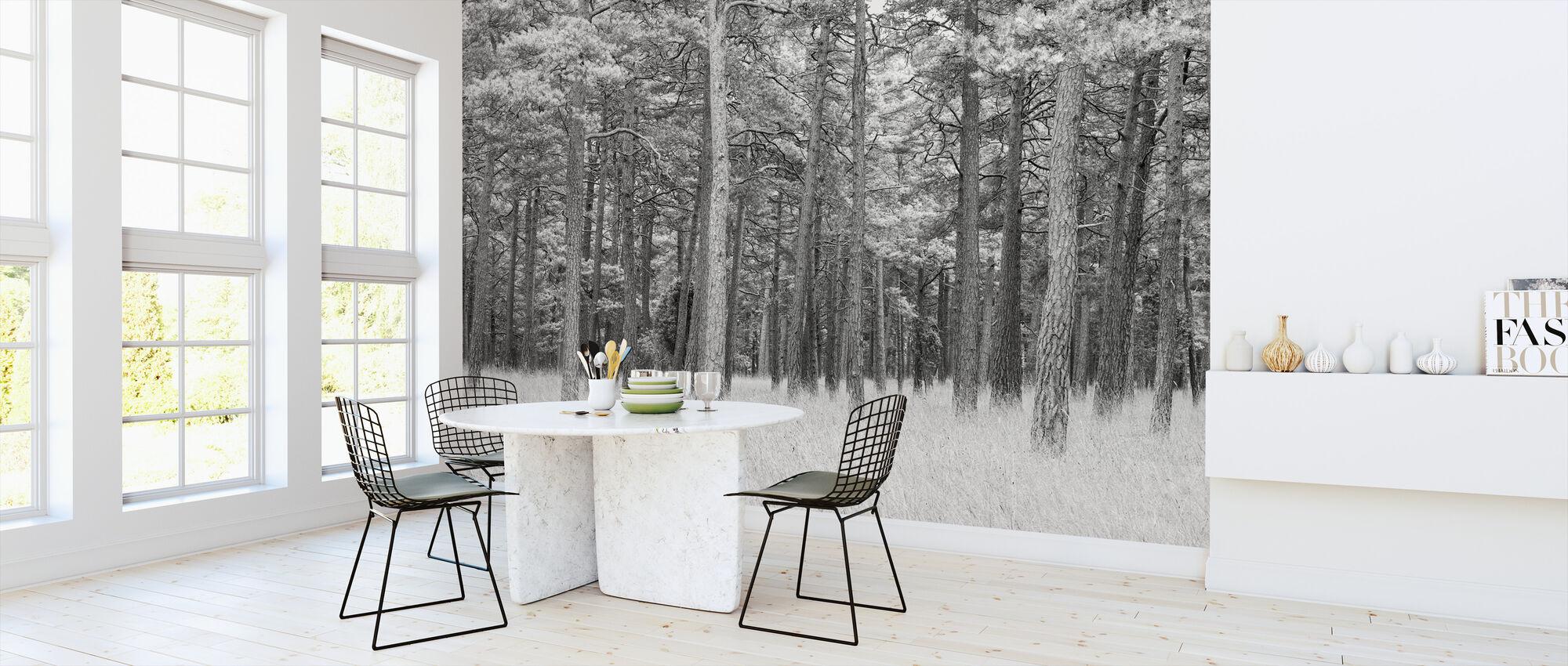 Pine Forest - Wallpaper - Kitchen