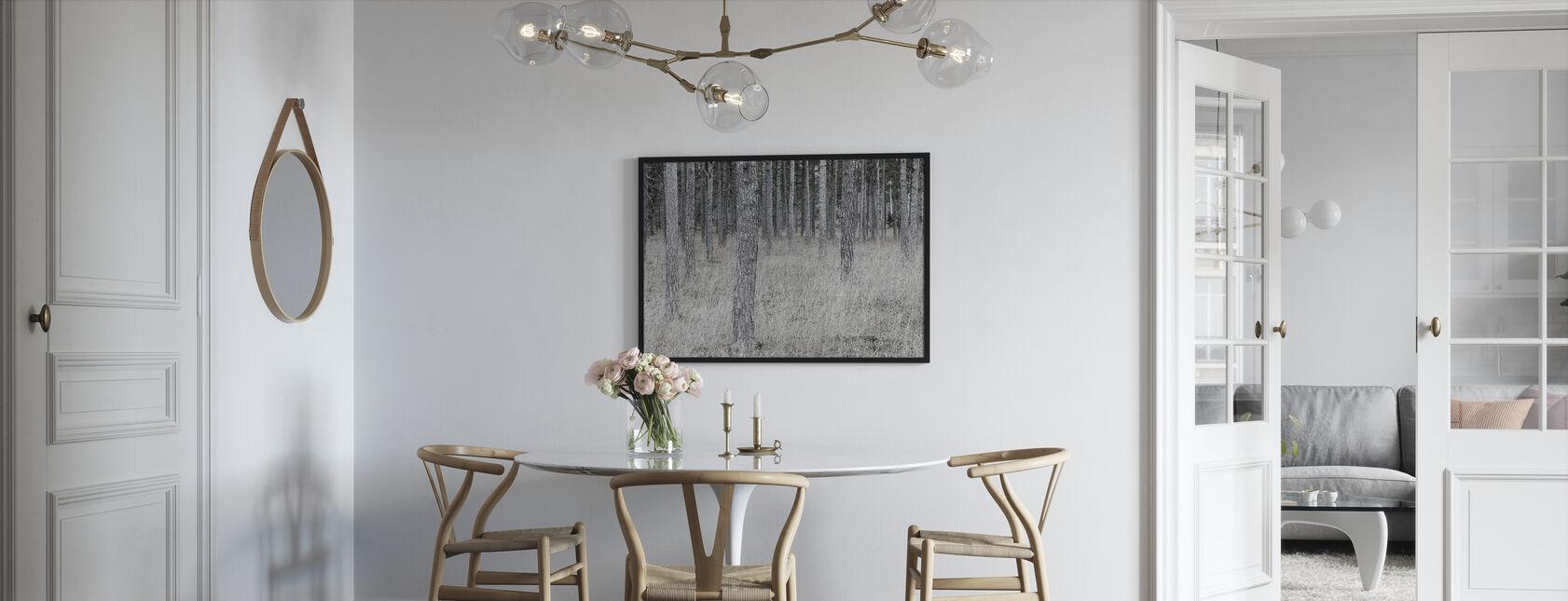 Pine Trunks - Framed print - Kitchen
