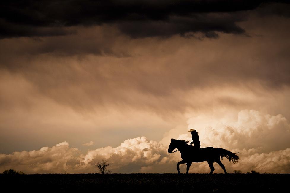 Kuva Ride the Storm Tapetit / tapetti 100 x 100 cm