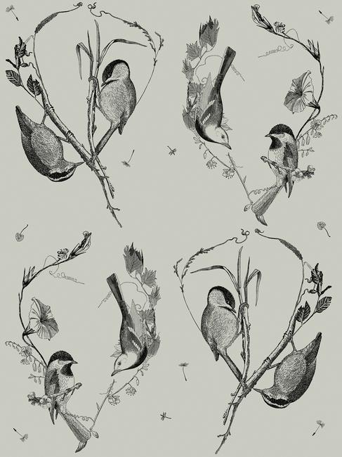 Kuva Cuckoo's Nest Moss Tapetit / tapetti 100 x 100 cm