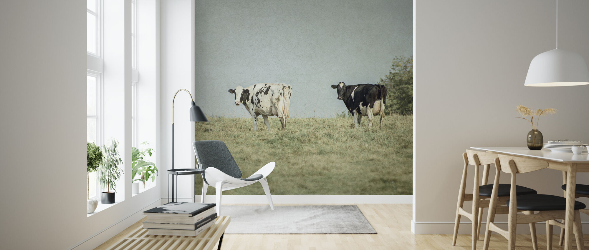 Grazing Cows - Wallpaper - Living Room