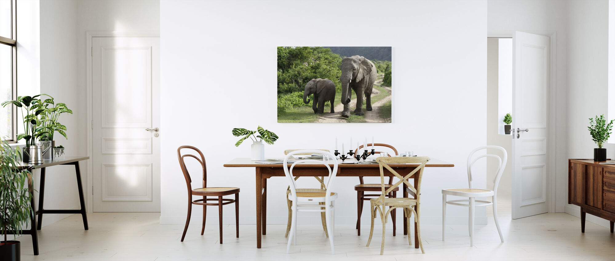 Elephant Baby and Mother_ - Canvas print - Kitchen