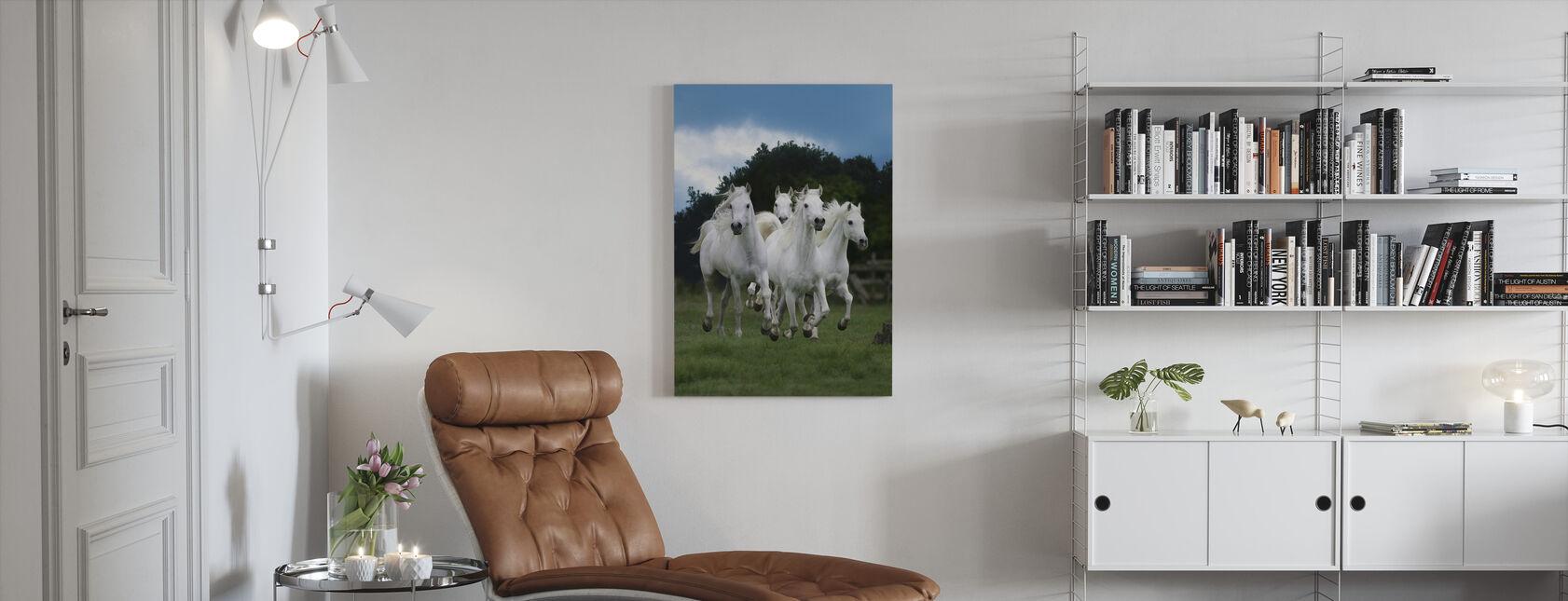 Glänzende weiße Pferde - Leinwandbild - Wohnzimmer