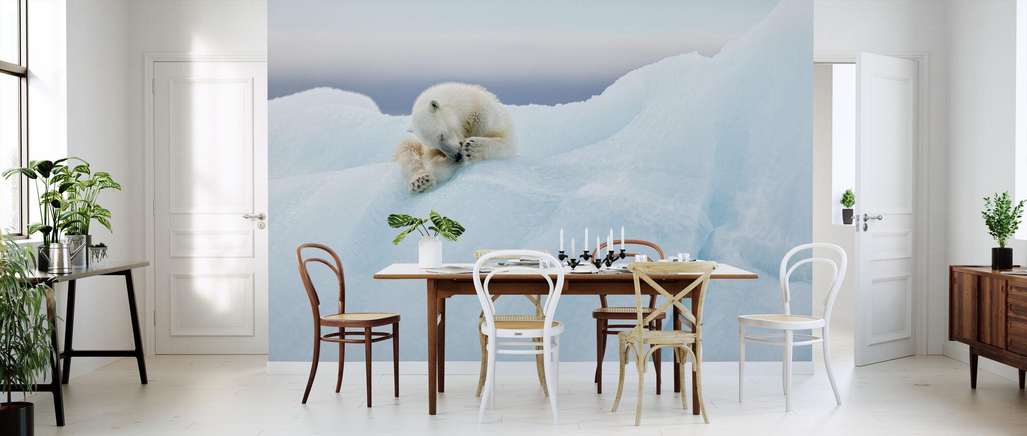 Pielęgnacja niedźwiedzia polarnego - Tapeta - Kuchnia