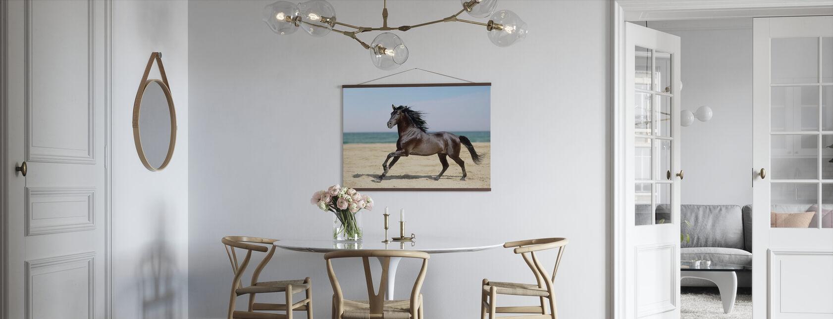 Strand Häst - Poster - Kök