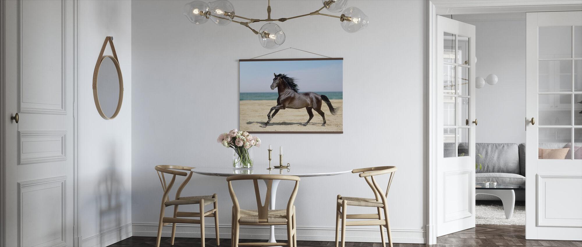 Beach Horse - Poster - Kitchen