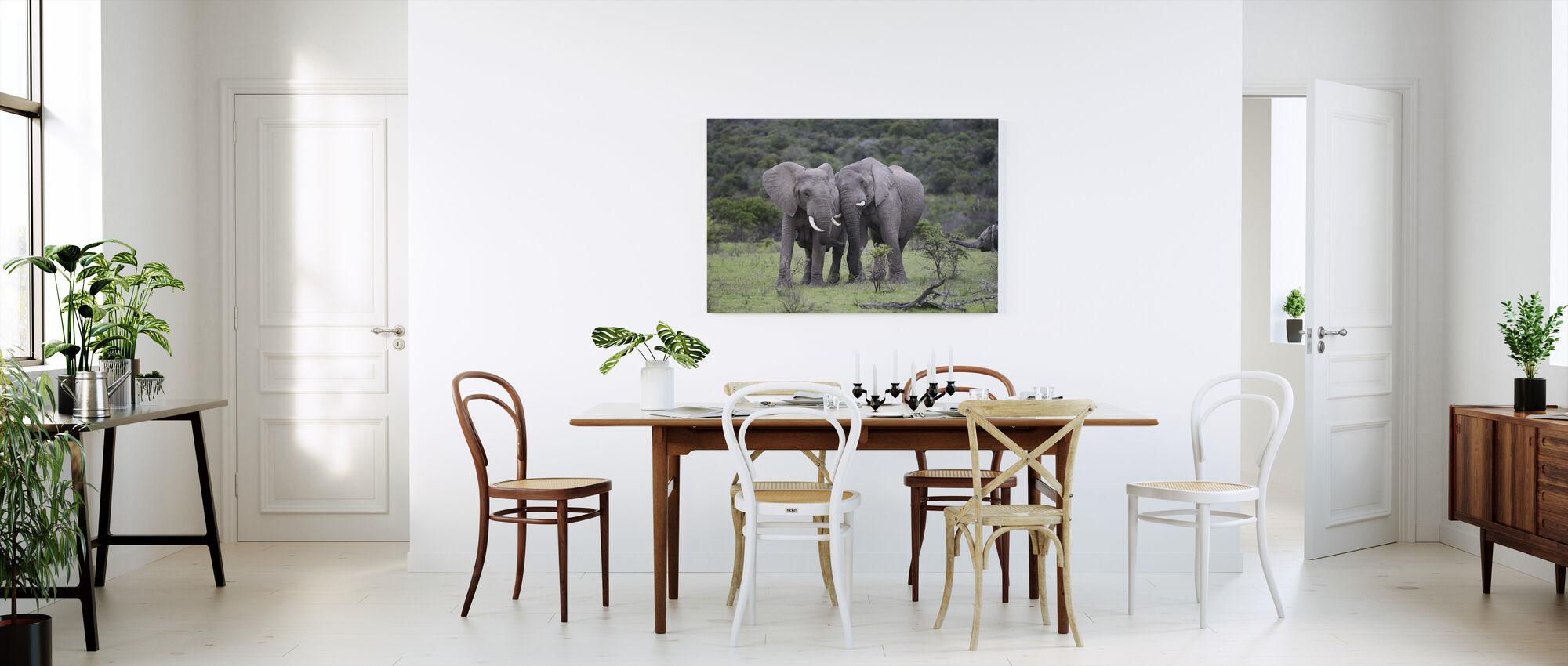 Knuffelen Olifanten - Canvas print - Keuken