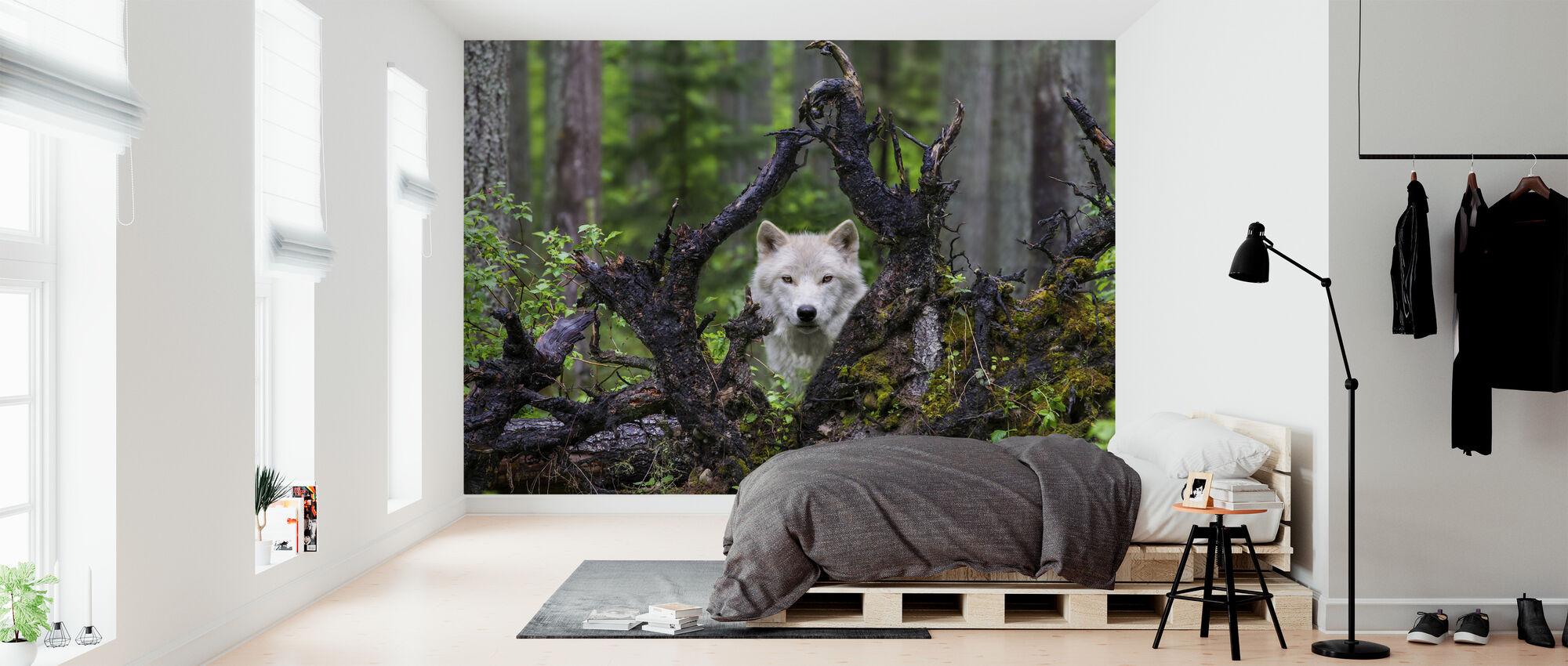 Wolf - Wallpaper - Bedroom
