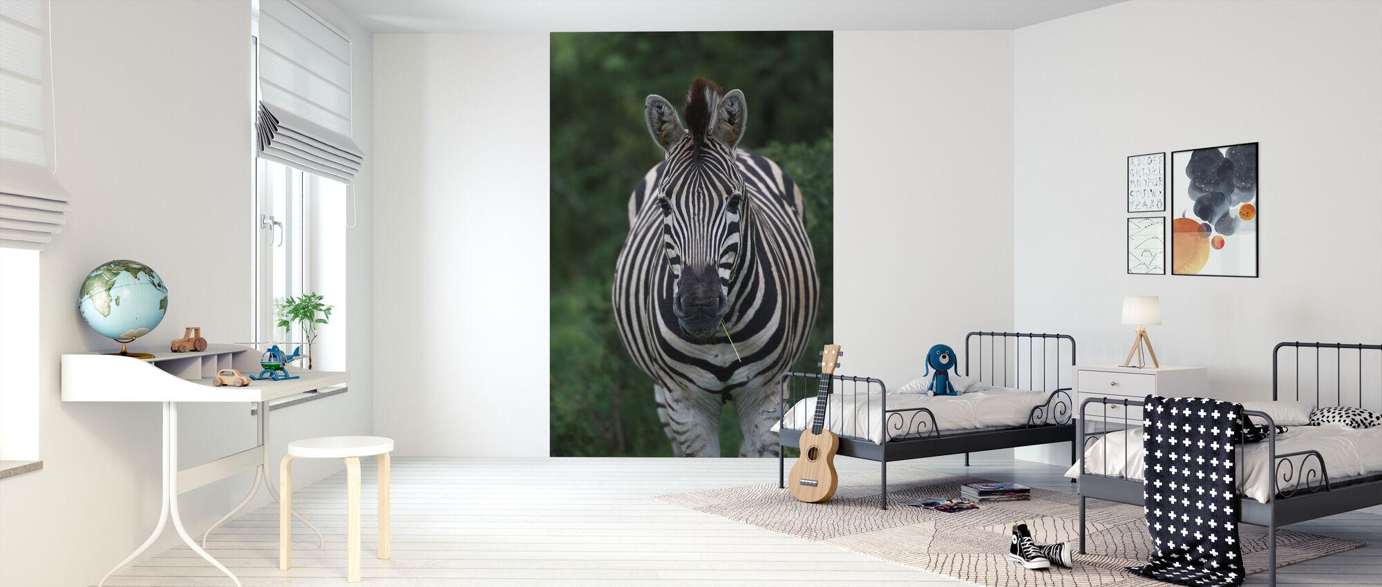 African Zebra - Wallpaper - Kids Room