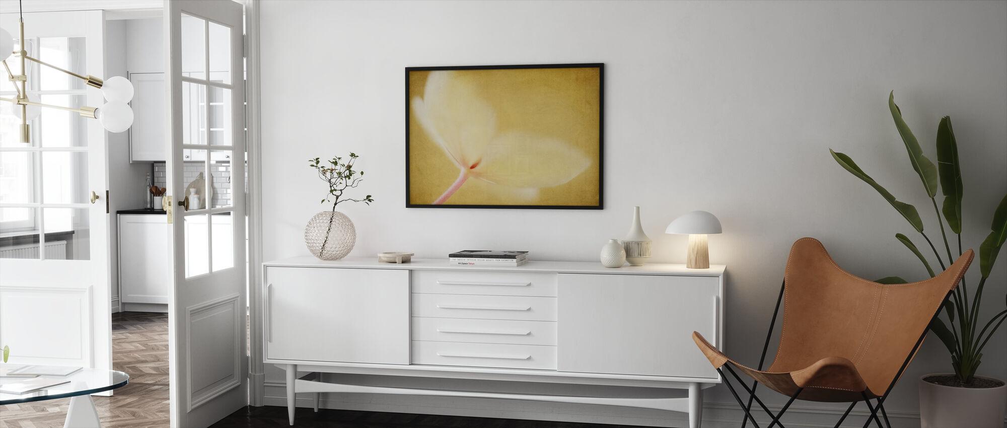 Lace-huippuinen Hydrangea - Kehystetty kuva - Olohuone
